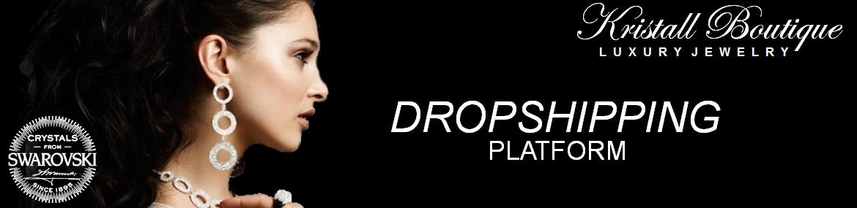 login Dropshipping Platform